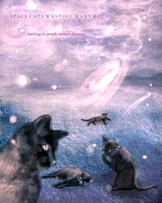 Space Cats bathing in purple meteor showers...and likely being saturated with mutation-inducing cosmic rays.