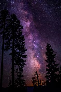 Photograph Milky Way in Forest by Joe Kaden on Night Sky Wallpaper, Scenery Wallpaper, Galaxy Wallpaper, Milky Way Photography, Moon Photography, Galaxy Photos, Nature Drawing, Abstract Nature, Sky Aesthetic