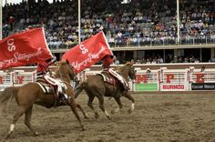 Calgary Stampede Ranchgirls...I did this for a few years! (fun!!!)