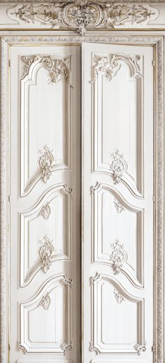 Haussmann-Style Paneled Doors Trompe l'oeil Wallpaper by Koziel. Made in France.