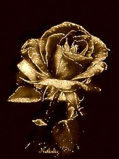 Золотая роза. Картинки на телефон анимация бесплатно.