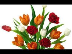 Tubes De Flowers For Png - Yahoo Image Search Results White Roses, Red Roses, Bolo Png, Boarder Designs, Minnie Png, Different Types Of Flowers, Rose Gift, Watercolor Rose, 3d Paper