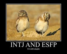 INTJ and ESFP - hahahaaaaa!!!! Tori and I exactly. :-P It's what you get when an INTJs and a ESFP are besties. ;)