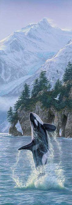 Vertical Rise-Orca Art Print by Lee Kromschroeder | Wild Wings