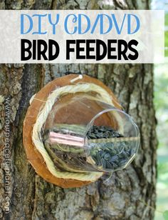 Heres a couple of unique upcycle birdfeeders you can make using plastic cups and old cd or dvds! Tinier birds will love them! Cool Diy Projects, Projects To Try, School Projects, Cd Diy, Cd Crafts, Door Crafts, Old Cds, Stained Glass Birds, Diy Bird Feeder
