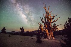 Astronomy Photos 2012: Royal Observatory Greenwich Announces Contest Winners (PHOTOS)milky way