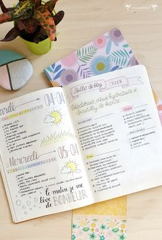 Daily Log Bullet Journal Collections