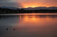 Lake Arbor Sunset Photo taken by Karen Miller, Director, Majestic View Nature Center  #cityofarvada