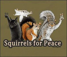 ...squirrely peace...