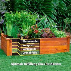 Hochbeet Classic Conjunto de madeira de acácia, empilhável - compre online na Gärtner Pötschke - Mett Mann & Garten - Hortas Raised Vegetable Gardens, Raised Garden Beds, Raised Beds, Landscaping Plants, Garden Plants, Diy Garden, Dream Garden, Garden Planning, Horticulture