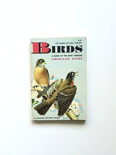 Vintage Birds Field Guide; Golden Nature Guide  #bertram #bergamot #etsy #vintage #book #homeschool #golden #nature #guide #fieldguide #birds #ornithology #birding #birder #birdwatching