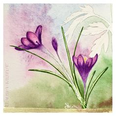Watercolor Illustration. Flora And Fauna, Watercolor Illustration, Digital Art, Flowers, Painting, Painting Art, Paintings, Royal Icing Flowers, Painted Canvas