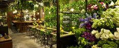 Aoyama Flower Market TEA HOUSE - Google Search