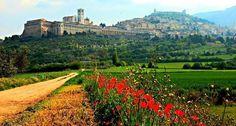 Assisi - Umbria www.Catholicfaithjourneys.com