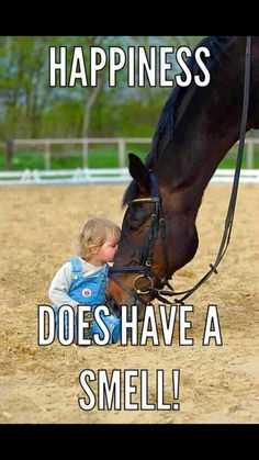 It is leather & horses! - Horses Funny - Funny Horse Meme - - It is leather & horses! The post It is leather & horses! appeared first on Gag Dad. Funny Horse Memes, Funny Horses, Cute Horses, Pretty Horses, Beautiful Horses, Animals Beautiful, Funny Animals, Horse Humor, Funny Horse Sayings