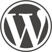 WordPress als basis voor een kunstenaarswebsite