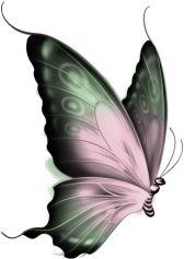 55 Ideas for tattoo butterfly flower god Butterfly Clip Art, Butterfly Drawing, Butterfly Pictures, Butterfly Wallpaper, Butterfly Crafts, Butterfly Kisses, Butterfly Flowers, Butterfly Wings, Beautiful Butterflies