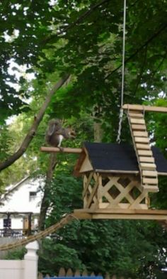 like a jungle gym. Squirrel Feeder Diy, Squirrel Home, Diy Bird Feeder, Outdoor Projects, Wood Projects, Bird House Feeder, Backyard Paradise, Nesting Boxes, Animal House