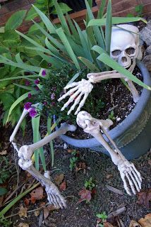 Skeleton flower pot