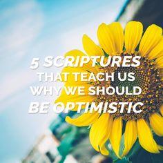 Lds Stories    Scriptures  Soul Today  Cheering  Optimistic  Sunshine  Scripture Study  Teach  Blog Pinterest