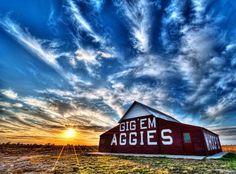 Texas A & M Aggies Gig 'em barn
