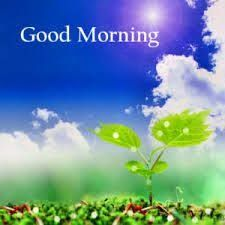 Nature good morning images pics hd download & share