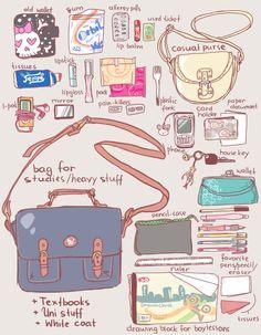 Girl's bag meme