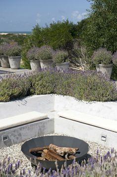 Zitkuil met vuurschaal en veel lavendel rondom.