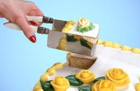 sheet cake cutter - this makes serving cake to a crowd - a piece of cake!!!