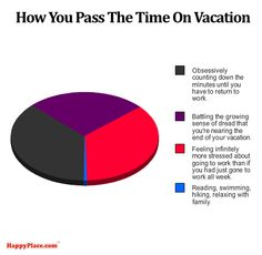 38+Honest+Pie+Charts+That+Perfectly+Explain+Life