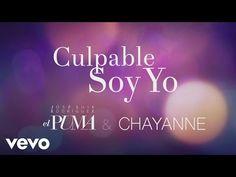 José Luis Rodríguez, Chayanne - Culpable Soy Yo (Audio) - YouTube