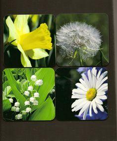 Set of 4 High Gloss Photo Coasters  FLOWERS  by TheOldBarnDoor