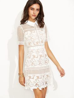 A chic and romantic lace dress for the summer days ! Shoulder(Cm): S:35cm, M:36cm Bust(Cm): S:82cm, M:86cm Waist Size(Cm): S:68cm, M:72cm Hip Size(Cm): S:100cm, M:104cm Length(Cm): S:86cm, M:87cm Sleeve Length(Cm): S:24cm, M:25cm