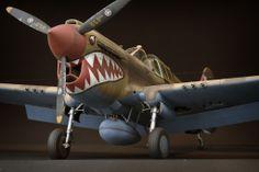 P-40 Warhawk 1/32 Scale Model