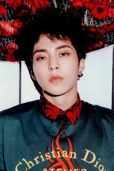 Xiumin - 181104 'Don't Mess Up My Tempo' album contents photo Exo Official, Chanyeol Baekhyun, Exo Album, Xiuchen, Exo Fan, Korean Boy, Kim Minseok, Bts And Exo, Exo Members