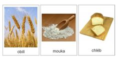 Montessori Materials, Preschool Worksheets, Science, Activities For Kids, Teaching, Ideas, Fun, Conte, Petra
