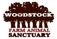 Surrounded by the Catskill Mountains in the town made famous for peace and music, Woodstock Farm Animal Sanctuary provides shelter and care to animals who have been rescued from factory farming, cases of abuse, neglect and abandonment.