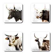 These coasters feature Ngunigalore's classic photographs of South Africa's indigenous nguni cattle. Set of South African Homes, African Home Decor, African Animals, Coaster Set, Cattle, Moose Art, Arts And Crafts, Classic, Photographs