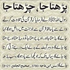 Learn hikmat in urdu