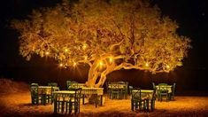 Πώς να φροντίσετε ένα λυπημένο άτομο σε 10 βήματα | Τι λες τώρα; Places Around The World, Around The Worlds, Midnight Summer Dream, Places To Travel, Places To Go, Naxos Greece, Mykonos Greece, Corfu, Golden Tree