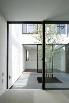 Patio House,Courtesy of APOLLO Architects & Associates
