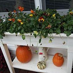 Adams Manufacturing 9303 01 3700 36 Inch Deluxe Garden Planter, Sage Green