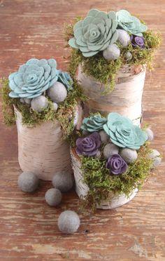 Feutre de laine / / Sweet succulentes / / feutre succulentes