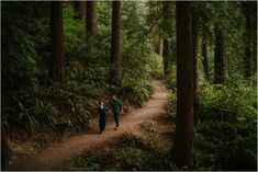 The Hoyt Arboretum has a section of redwoods that look AMAZING for Portland engagement photos or Portland couples photos in the forest