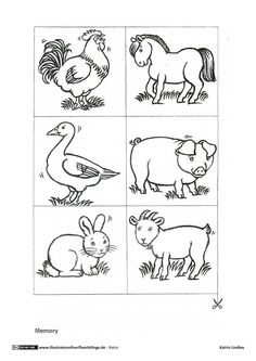 Farm Animals Coloring Pages Pdf Farm Animal Coloring Pages, Coloring Pages For Kids, Coloring Books, Printable Preschool Worksheets, Kindergarten Worksheets, Farm Animals Preschool, Illustrator, Bird Template, Social Studies Worksheets