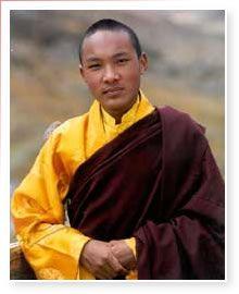 His Holiness The XVII th Gyalwa Karmapa Urgyen Thinley Dudul Dorje