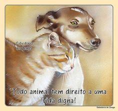 Lu Amorim - Google+Todo animal tem direito a uma vida digna''.