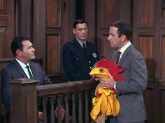 Get Smart: Season 1, Episode 8 The Day Smart Turned Chicken (6 Nov. 1965) Don Adams, Maxwell Smart, Mel Brooks, Buck Henry