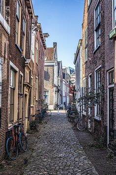 Bullet Journel, Leiden, Study Abroad, Gates, Holland, Universe, New Homes, Houses, Doors
