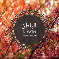 Al-Batin,The Hidden One, 99 Beautiful Names of Allah.  Did a heart meditation with this name today.